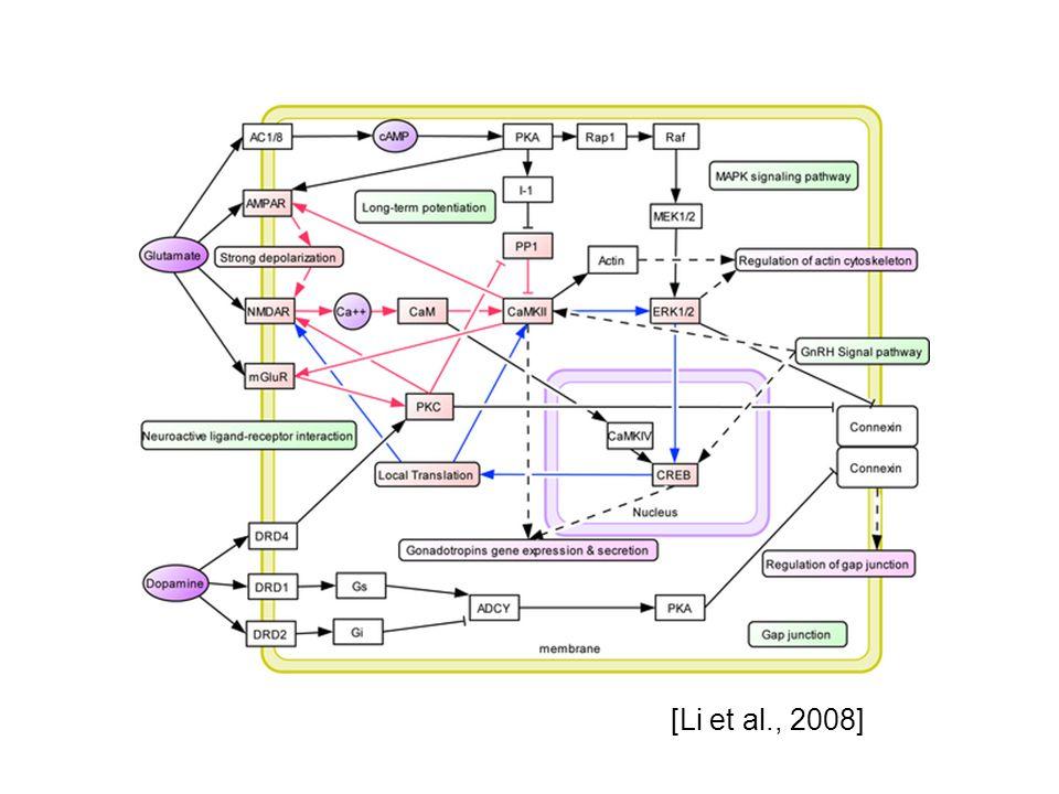 [Li et al., 2008]
